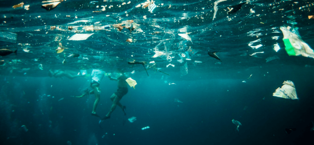 Australian waste end up in our oceans